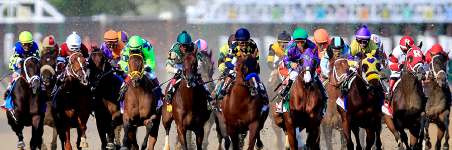 2016 Preakness Quinella Betting Picks Preview