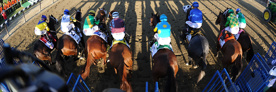 2016 Belmont Stakes Morning Line Odds
