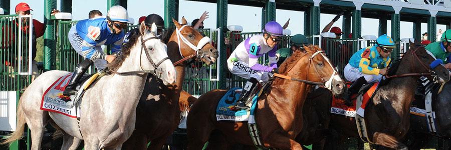 2019 Preakness Stakes Dark Horses & Longshots