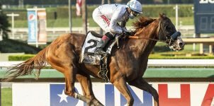 2020 Breeders Cup Classic Odds Update Nov. 5th Edition