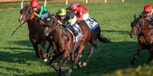 2020 Breeders Cup Horse Racing Expert Analysis for Nov. 6