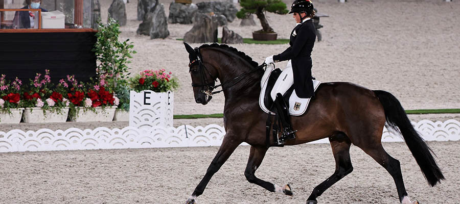 2020 Tokyo Olympics: Betting Guide for Equestrian Sports