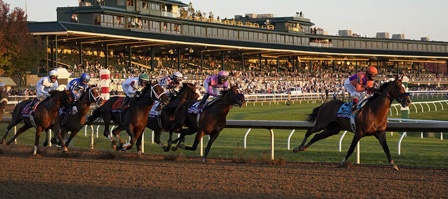 2020 Top Stakes Races for the Week Nov. 23rd Edition