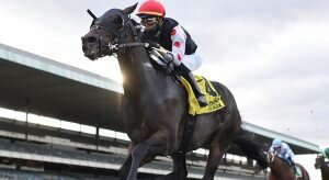 2020 Top Stakes Races for the Week Oct. 19th Edition