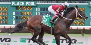 2020 Top Stakes Races for the Week - September 7th Edition