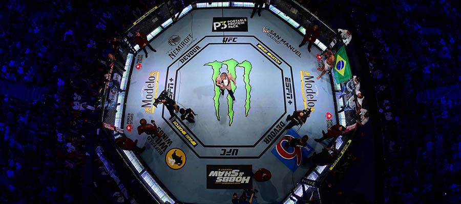 2020 UFC Rumors & Betting News November 30th Edition