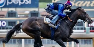 2021 Belmont Stakes Horse Racing Betting Odds & Picks