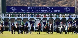 2021 Breeders' Cup Betting Update: With Two Weeks Before the Classic, Knicks Go the Solid Pick