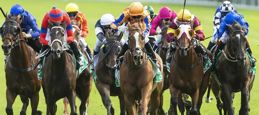 2021 Dubai World Cup Horse Racing Analysis Update Mar. 9th