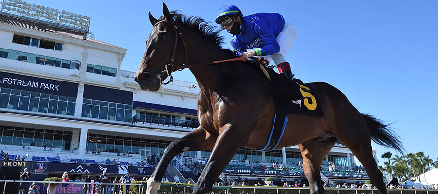 2021 Kentucky Derby: New Contender & Prospect Showing Up