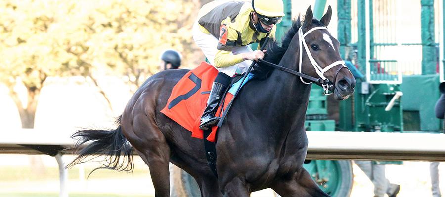 2021 Kentucky Derby Update: A New Contender Emerges