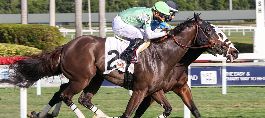 2021 Top Stakes Races for the Week Jan. 11th Edition