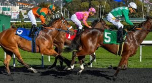 2021 Top Stakes Races for the Week March 8th Edition