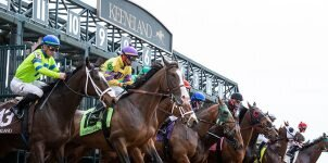 2021 Top Stakes Races to Bet On From Oct. 13th to Oct. 17th