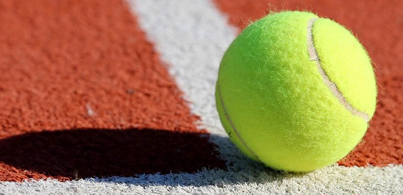 ATP Sofia Open and San Diego Open Betting Preview