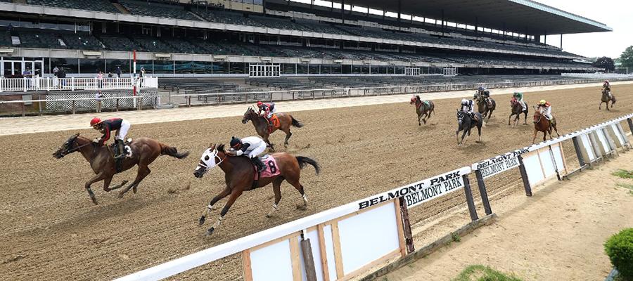 Belmont Park Horse Racing Odds & Picks for Thursday, June 18