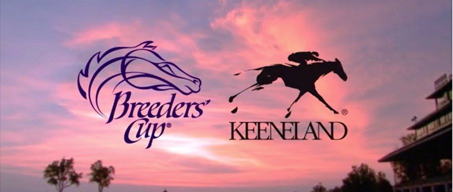 Horsebetting Guide on 2015 Breeders Cup Classic