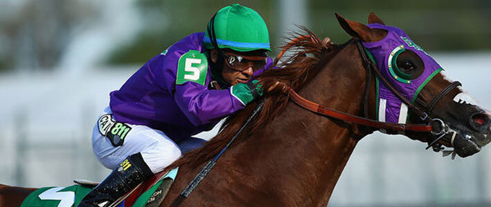 Triple Crown Horse Betting Performances and Fun Facts