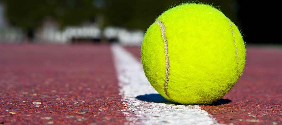 Coronavirus COVID-19 ATP & WTA Update – Nov. 11th Edition