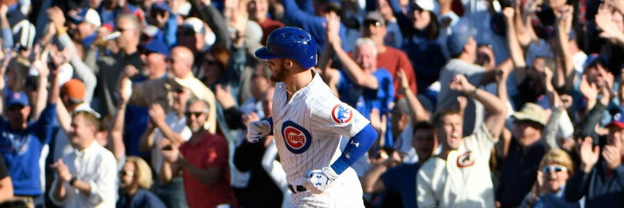 The Cubs are MLB Betting favorites to win their Division in 2019.