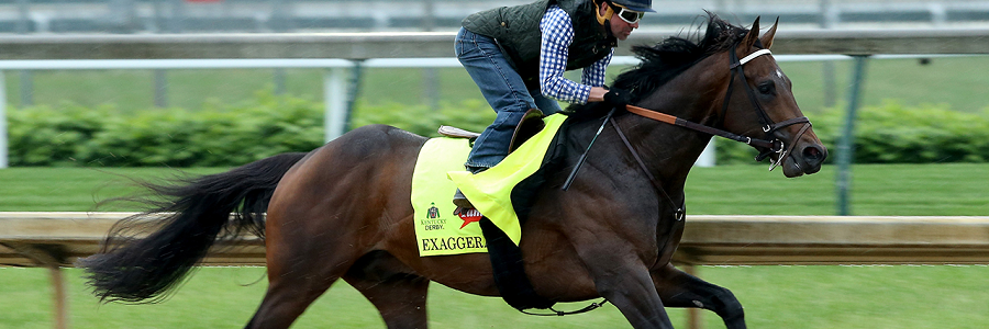 Exaggerator's 2016 Preakness Stakes Betting Profile