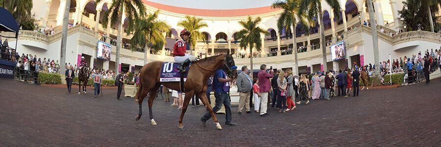 Gulfstream Park Horse Racing Odds & Picks for April 11th 2020