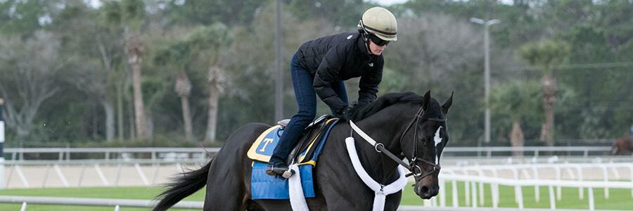 Gulfstream Park Horse Racing Odds & Picks for April 18 2020