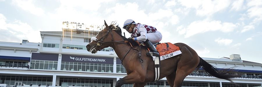 Gulfstream Park Horse Racing Odds & Picks for Friday, May 22