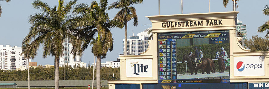Gulfstream Park Horse Racing Odds & Picks for Friday, May 29