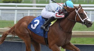 Gulfstream Park Horse Racing Odds & Picks for Saturday, July 4