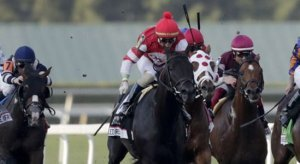 Gulfstream Park Horse Racing Odds & Picks for Saturday, May 30