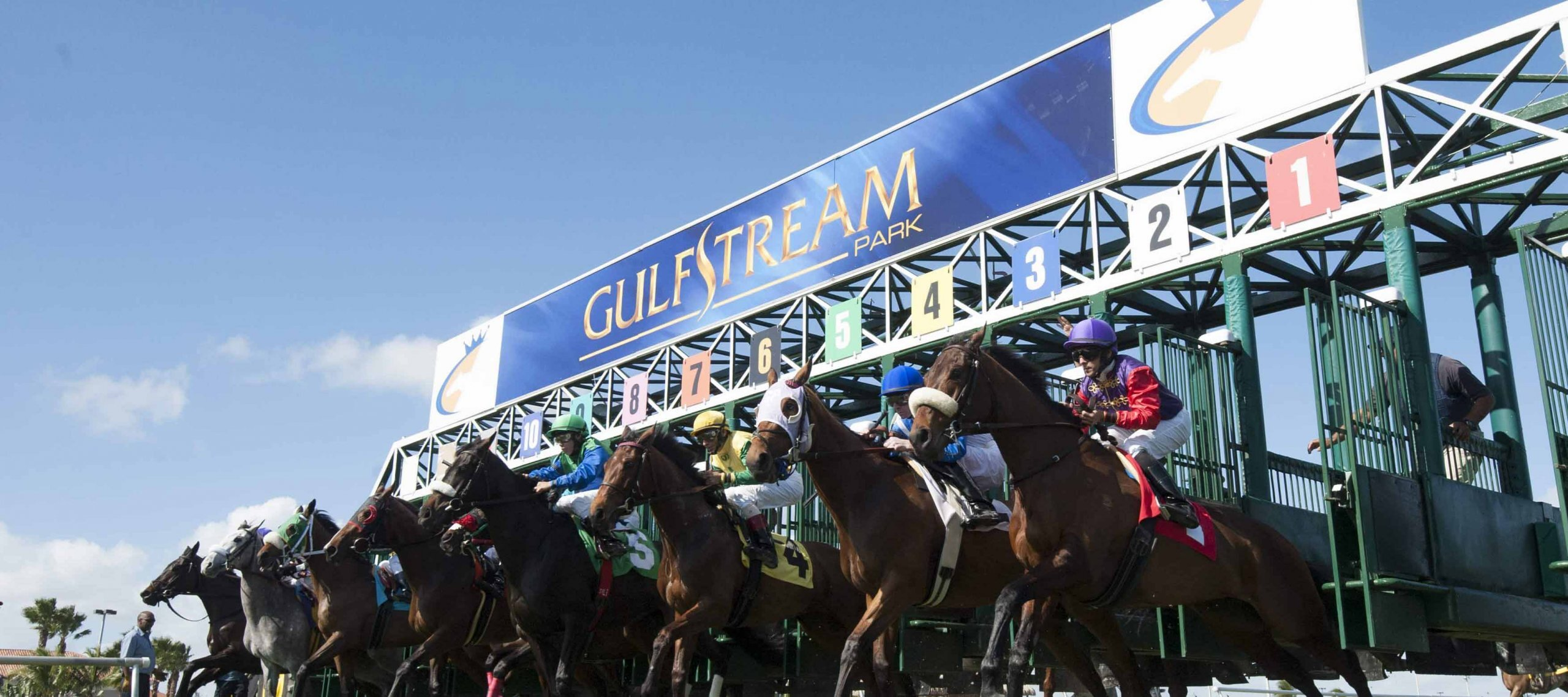 Gulfstream Park Horse Racing Odds & Picks for Wednesday, June 24
