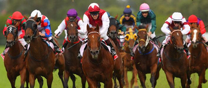 Horse-Betting-Kentucky-Derby
