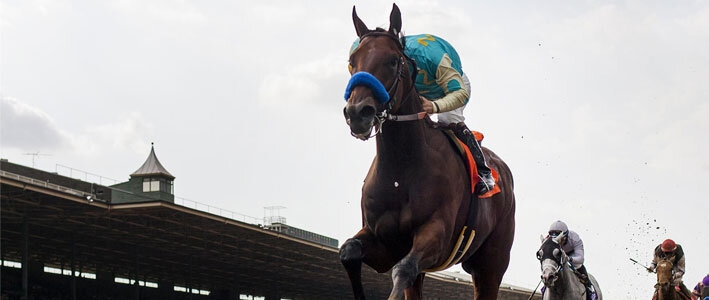 2015 Preakness Horse Betting Odds on American Pharoah