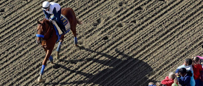 Horse Racing Odds on Dortmund at 2015 Preakness Stakes