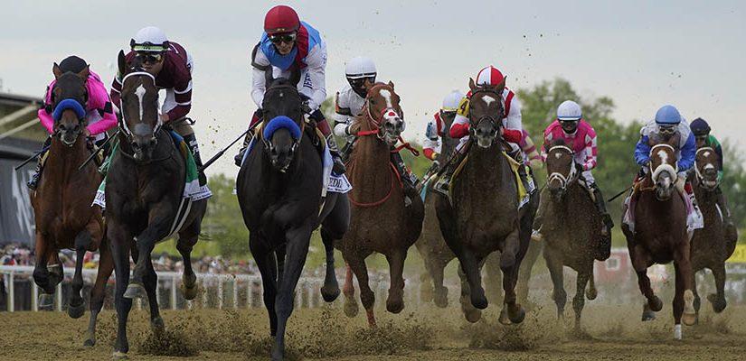 Horse Racing Betting: 2021 Preakness Stakes Recap