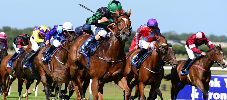 Horse Racing Odds & Picks for Top Stakes Races of the Week