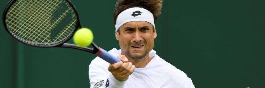 Wimbledon 2017 Men's Third Round (Friday, July 7th) - David Ferrer