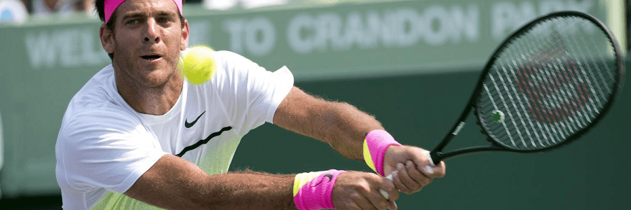 Juan Martin del Potro is one of Argentina's most accomplished tennis players.
