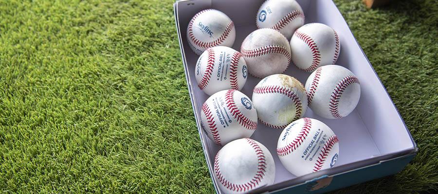 MLB AL Division and NL Division Possible 2021 Series Matchups Predictions