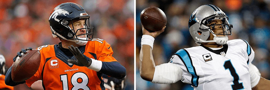 Peyton Manning and Cam Newton will do battle for NFL glory in Super Bowl 50.