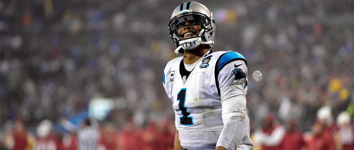 The Panthers are one of the top candidates in the NFC south to win the championship in 2015