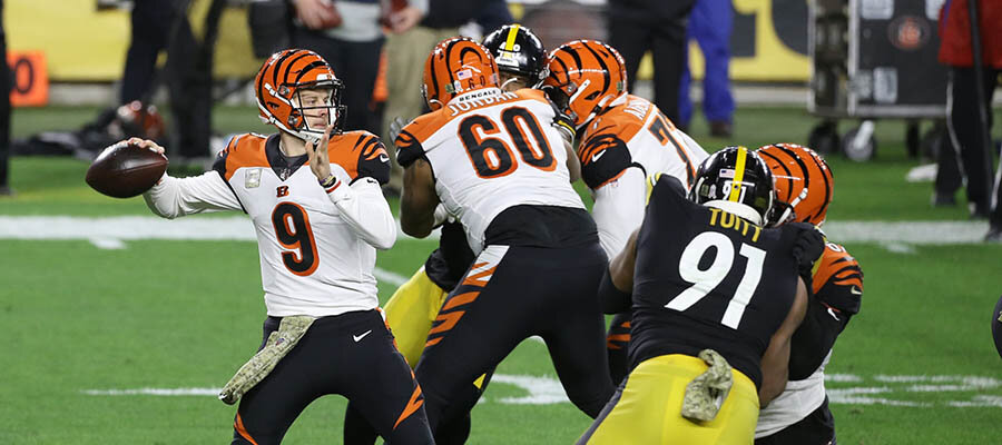 NFL Betting Picks for the 2021 AFC North Division