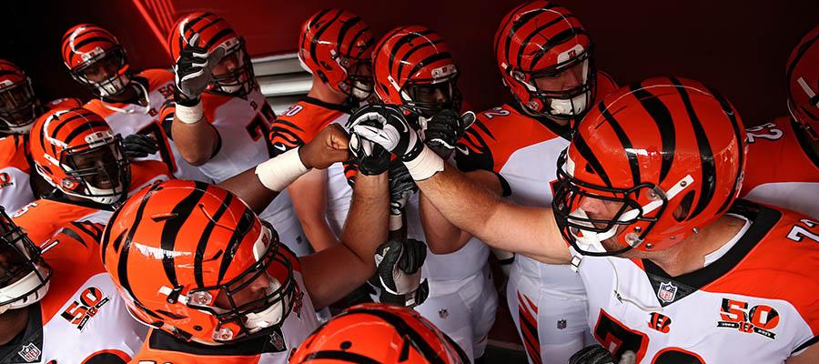 NFL Cincinnati Bengals Schedule Betting Odds & Analysis