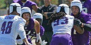 NFL In-Depth Betting Analysis of the Minnesota Vikings' Offense