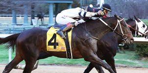 Oaklawn Park Horse Racing Picks for April 4