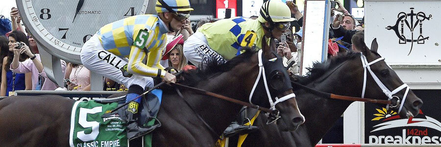 Horse Racing Betting Tips to Handicap the 2018 Preakness Stakes.