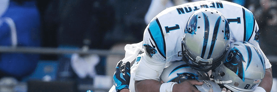 Carolina Panthers NFL Playoffs Betting Preview
