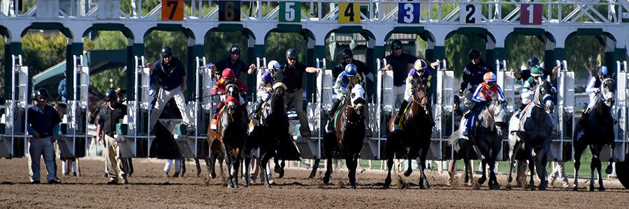 Santa Anita Park Horse Racing Odds & Picks for Friday, May 15