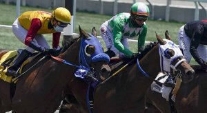 Santa Anita Park Horse Racing Odds Picks for Friday, May 29